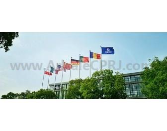 Joyson has global branches in many countries, including Germany, Portugal, Romania, US, Mexico, etc.